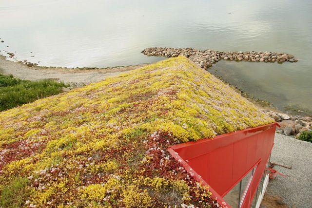 Teras ve Çatı Bahçeleri için Su Tutma Hazneli Plastik Drenaj Levhası: DRAINROOF