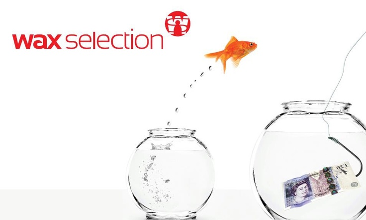 Wax Selection - Time for a bigger pond with better prospects?
