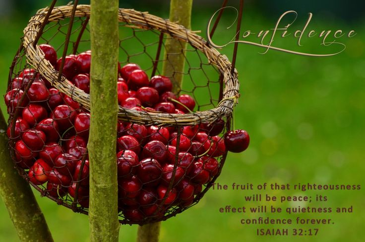 "Confidence -""The fruit of that righteousness will be peace; its effect will be quietness and confidence forever."" Isaiah 32:17"