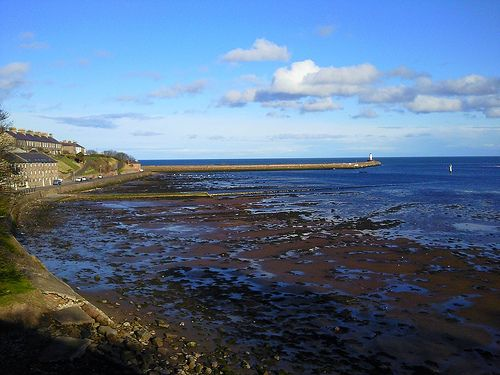 Tweed Estuary in Berwick upon Tweed
