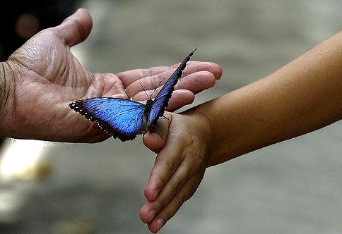 Hay que ser amable y siempre colaborar de la mejor manera posible con el prójimo y la naturaleza, necesitan que seamos afables con ella, recordemos que todos somos uno