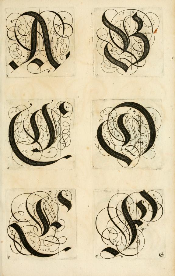 ✍ Sensual Calligraphy Scripts ✍ initials, typography styles and calligraphic art - Kunstrichtige Schreibart, 1655