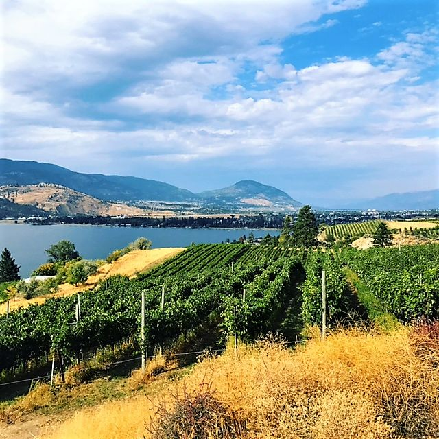 BEST WINERIES IN THE OKANAGAN VALLEY. A local BC favourite with an amazing view of Skaha and Okanagan Lakes Pentage Winery is a boutique small batch producer creating beautifully hand-crafted wines.