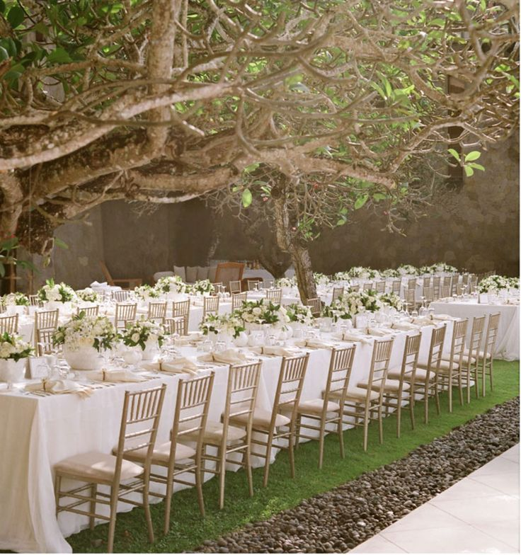 simple outdoor wedding ideas for summer%0A Charleston Wedding Planner  as seen in Martha Stewart