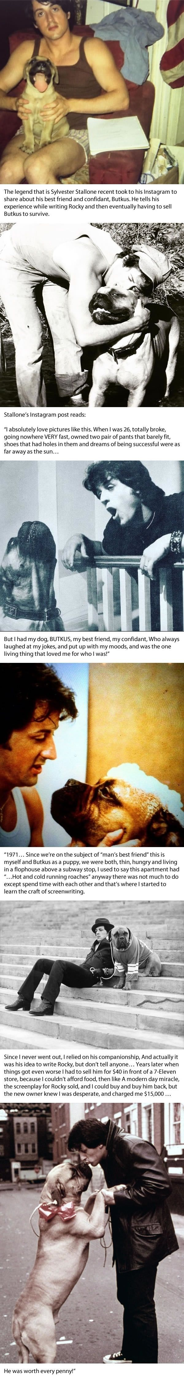 Sylvester Stallone shares a beautiful tribute to his dog