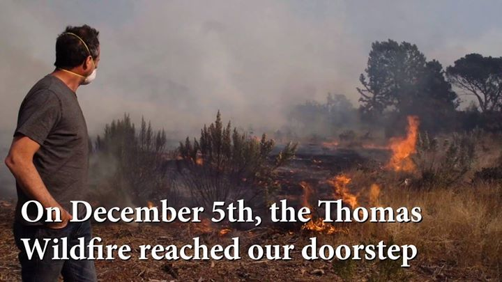 We need your help with the #Thomasfire!! 🔥🐢🏡🔥  We survived the fires, but still need funds to repair the grounds, filter water/air, and cover our evacuation costs for these endangered turtles and tortoises. Anything helps and please share this video!