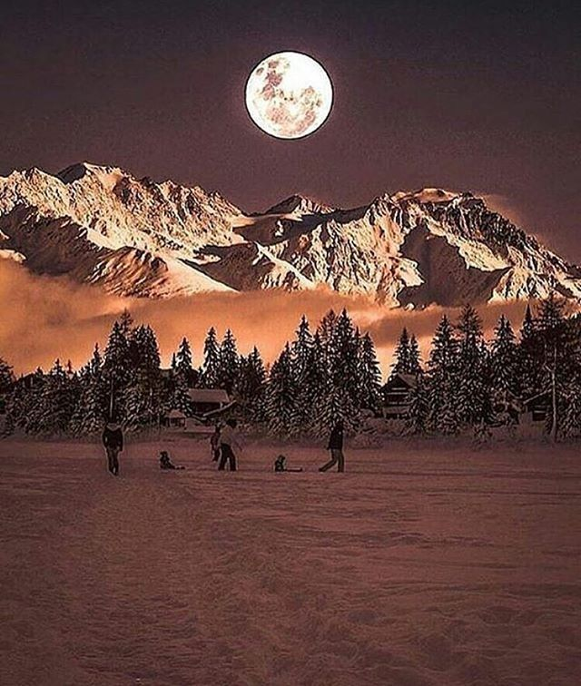 Swiss alps,Switzerland  Photo by @sennarelax  Tag #natureofexistence