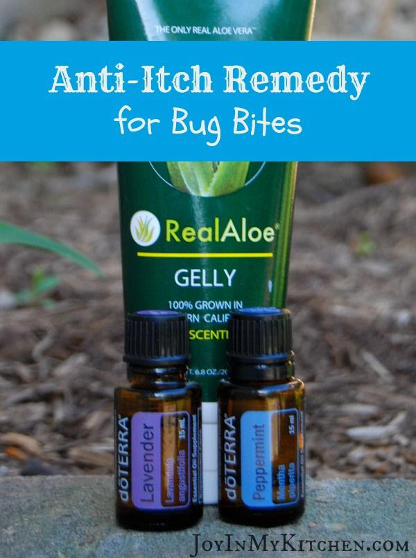 Anti-Itch Remedies for Bug Bites