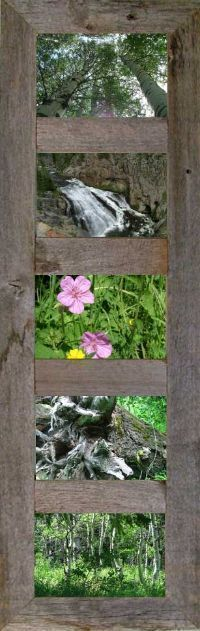 6 Panel Wooden Picture Frame w/Glass 4x6
