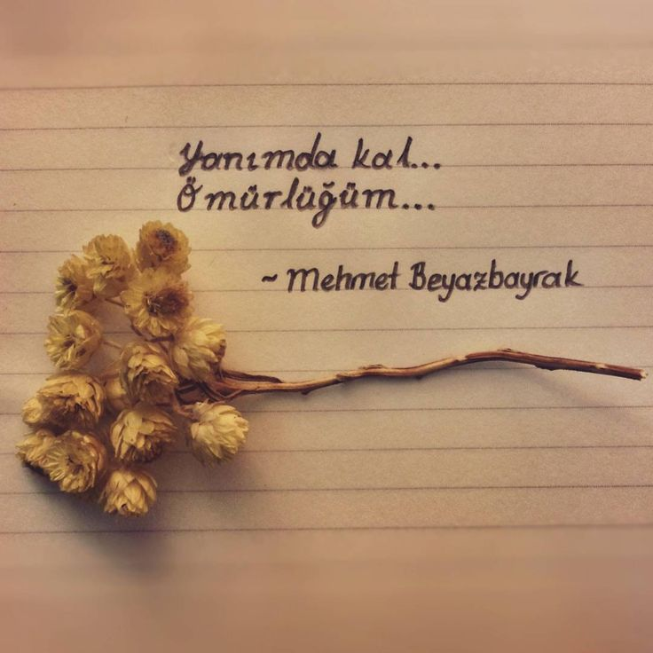 Yanımda kal... Ömürlüğüm... - Mehmet Beyazbayrak #sözler #anlamlısözler #güzelsözler #manalısözler #özlüsözler #alıntı #alıntılar #alıntıdır #alıntısözler #şiir