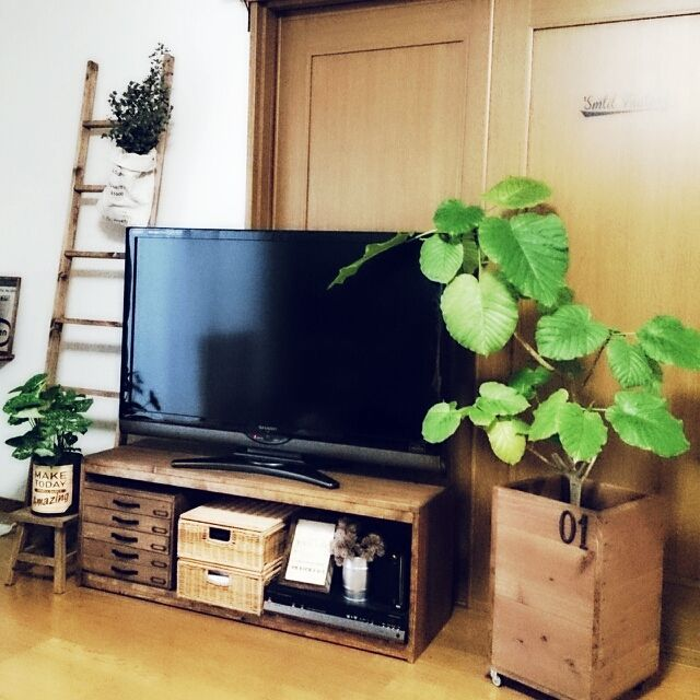 237    テレビ周り/Tomo×masamay17/植物/ラダー/DIY/壁/天井…などのインテリア実例 - 2015-04-05 06:54:56   RoomClip(ルームクリップ)