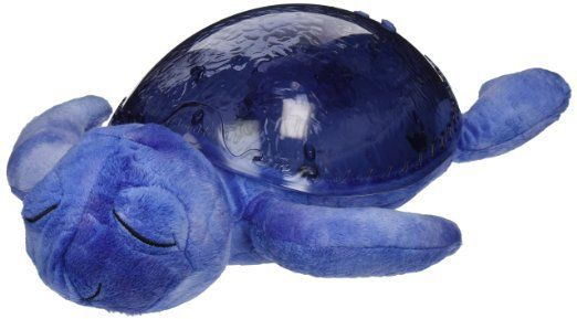 Tranquil Turtle: Visual Toys for Autism