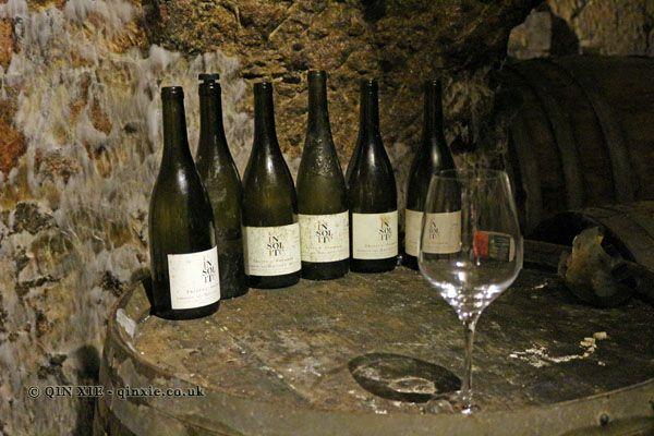 Domaine des Roches Neuves, Saumur-Champigny   Amateur Wine