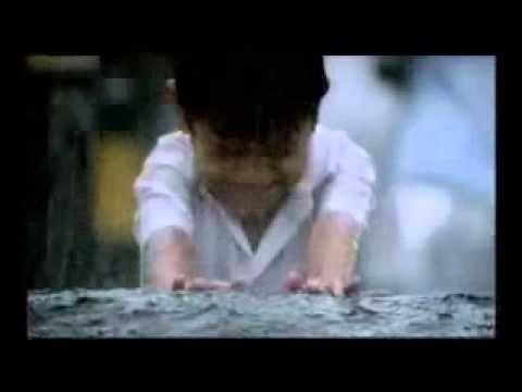 """VIDEO SOBRE TRABAJO EN EQUIPO. Treuen un arbre del mig d'un carrer. Només música hindú. CM i CS 2'06"""""""