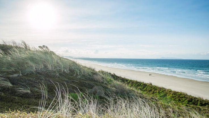 Pakiri Beach, Rodney, Auckland, New Zealand