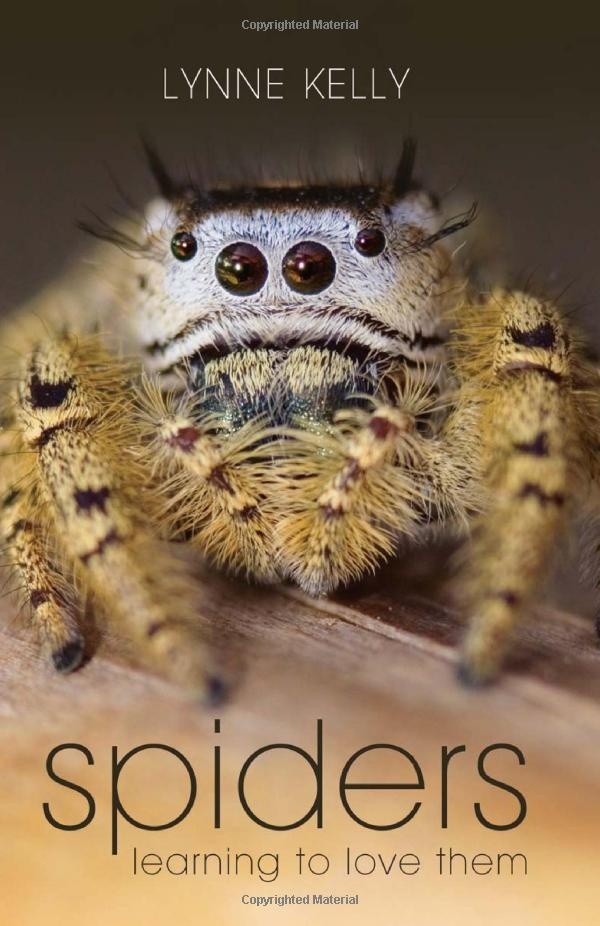 5 REASONS TO LOVE SPIDERS feat. ARACHNOPHOBIA MOVIE - …