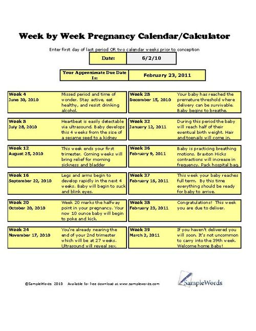 14 best Parenting \ Educational Forms images on Pinterest - call sheet template excel