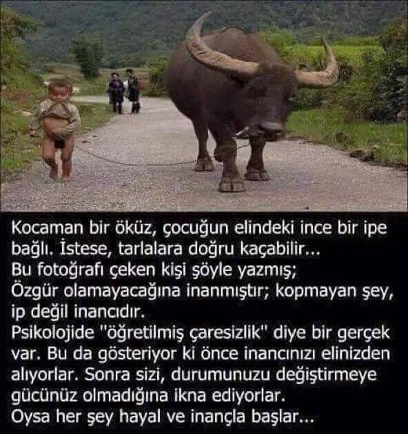 İşte Türkiye 'nin Durumu
