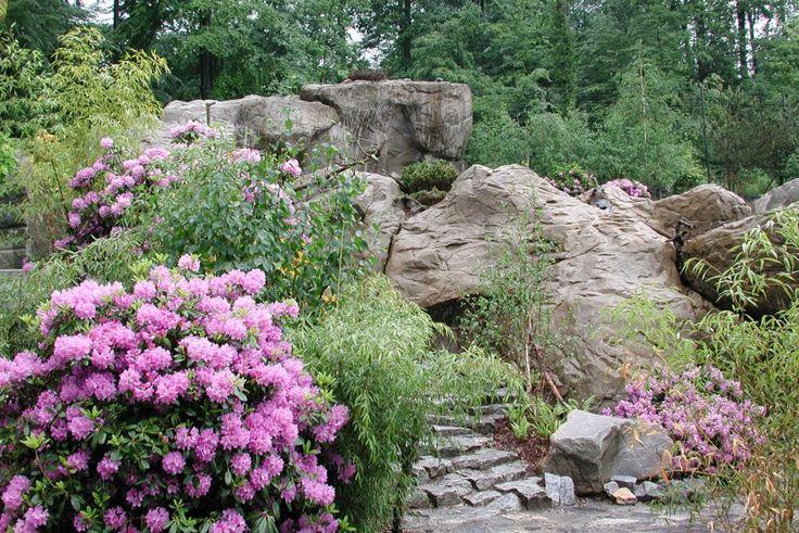 Himalayaanlage, Zoo Zürich | vetschpartner Landschaftsarchitekten AG
