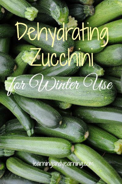 Dehydrating zucchini is a great way to preserve it for winter use in soups, stews, and even chili!