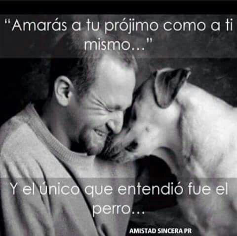 Yo por eso amo a mi perro                                                                                                                                                                                 Más