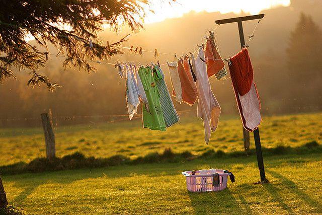 aprovecha si tienes jardín, para secar tu ropa al sol. Es lo mejor