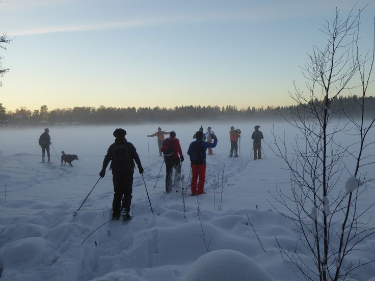 With snow shoes we can go everywhere: rough terrain, woods, frozen lakes, you name it. Amazing landscapes will be your reward.