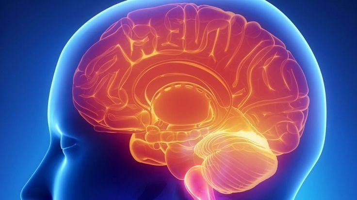 İnsan beyninin sağ ve sol tarafları, farklı yetenekleri barındırır ve farklı görevlere sahiptir. Peki bu yetenekler hangileri hangi tarafta yer alır?