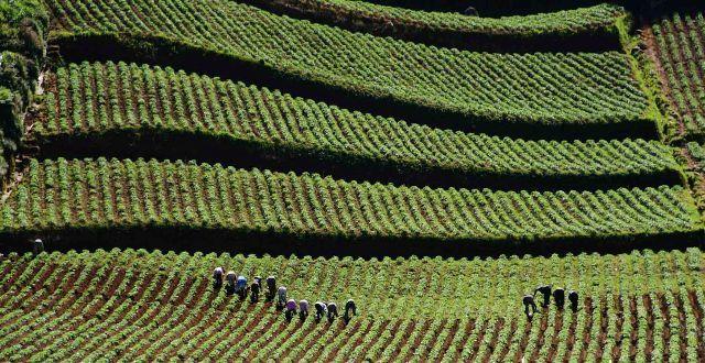Dieng adalah kawasan dataran tinggi di Jawa Tengah, yang masuk wilayah Kabupaten Banjarnegara dan Kabupaten Wonosobo | Need Vacation? Call us RAJA-WISATA.com 081265576555 #VisitIndonesia2014