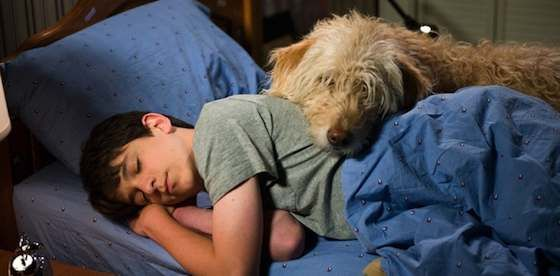 Diary of a Wimpy Kid: Dog Days Movie Review - Zachary Gordon and Devon Bostick | Movie Review - Michael Phillips