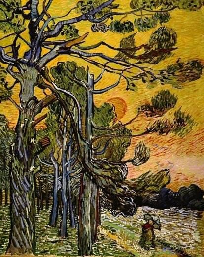271 best Vincent Van Gogh images on Pinterest Oil on canvas - schlafzimmer in arles