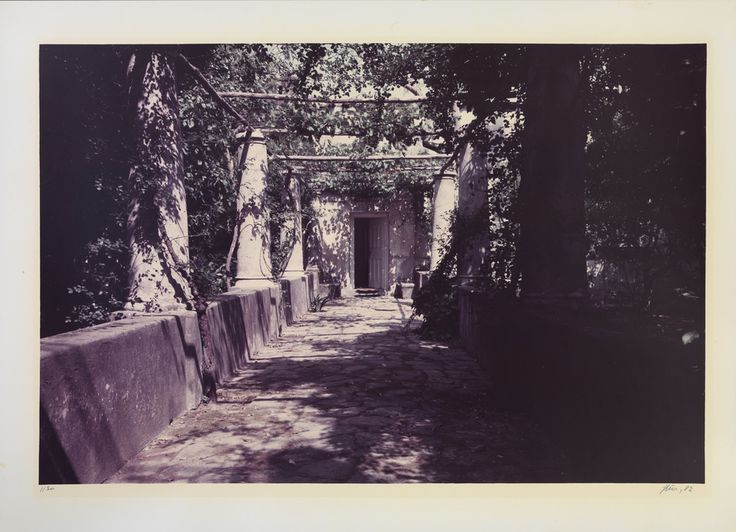 Luigi Ghirri viale di accesso a Villa Orlandi,  Capri un pretesto Certosa di San Giacomo 01.07.1983