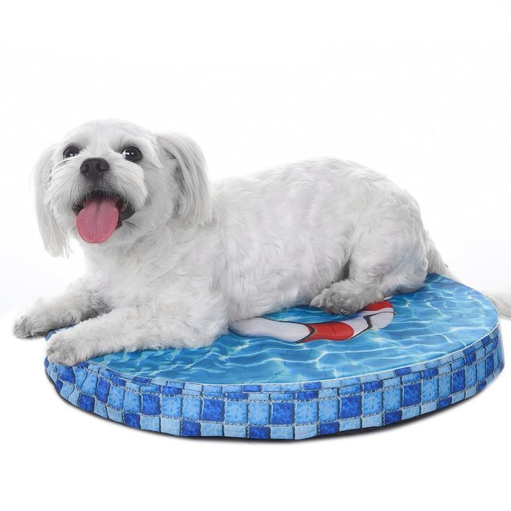 Dog Chewing On Rugs: Foerteng Pet Cooling Mat Swimming Pool Shape Indoor