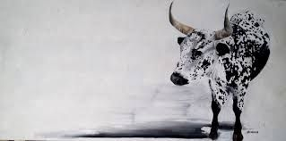 Image result for Nguni Prints