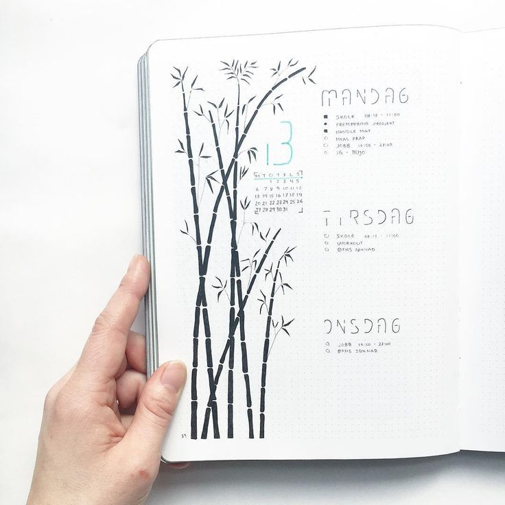 "363 Likes, 16 Comments - [ Amalie ] (@northernplanner) on Instagram: ""Ready for a new week hope everyone is having a great start of the week • • • • • #bujo…"""