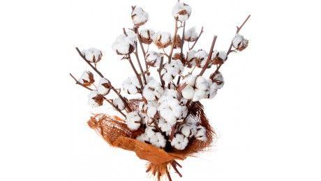 #Bouquet de #fleurs de #coton - boule de coton naturelle - #Francefleurs - #noces de coton #cadeau