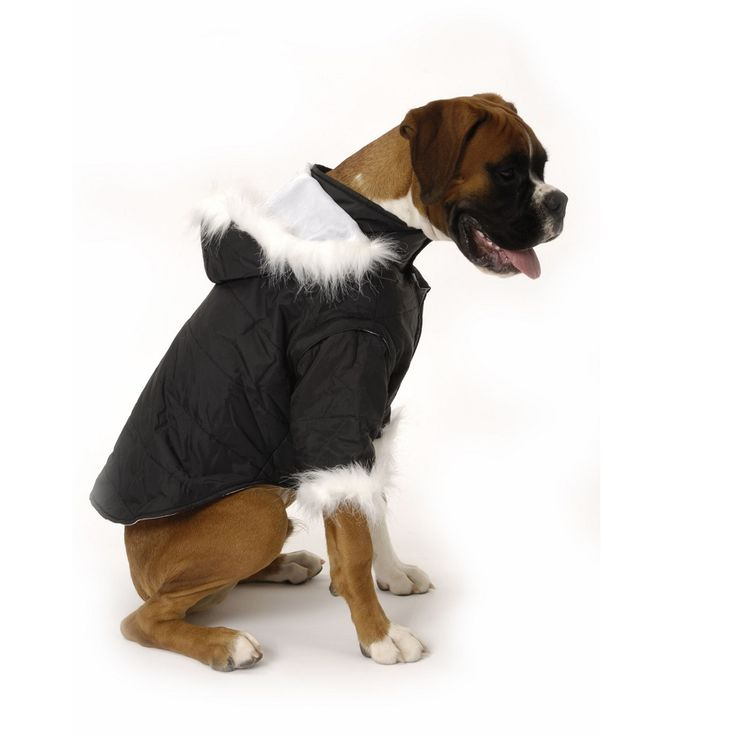 Nosy Dog Parka in Black £34.99 #dogcoat #dogparka #dograincoat