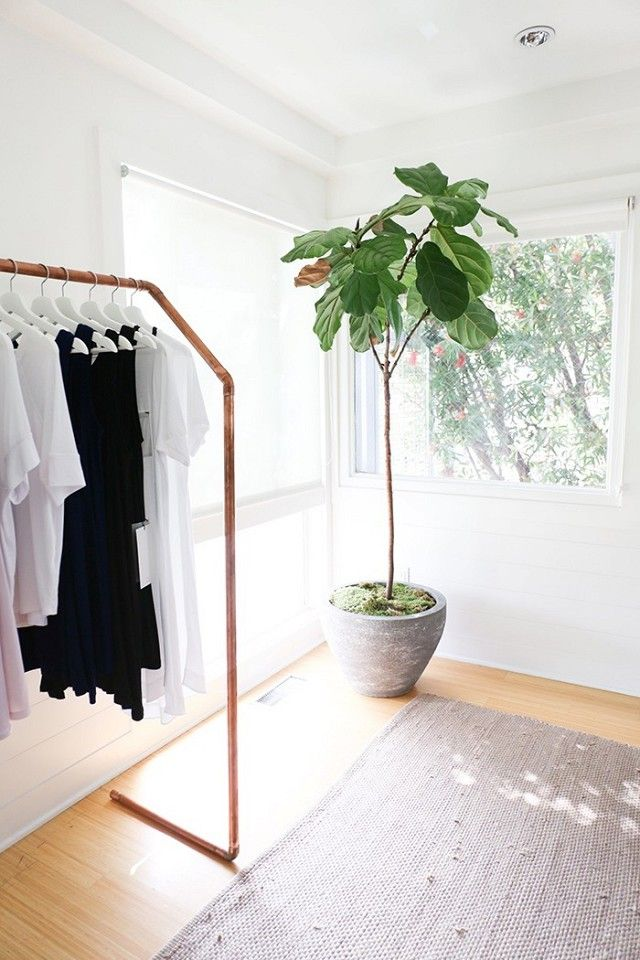 Minimalist retail space with rose gold piping clothing racks and a large indoor plant