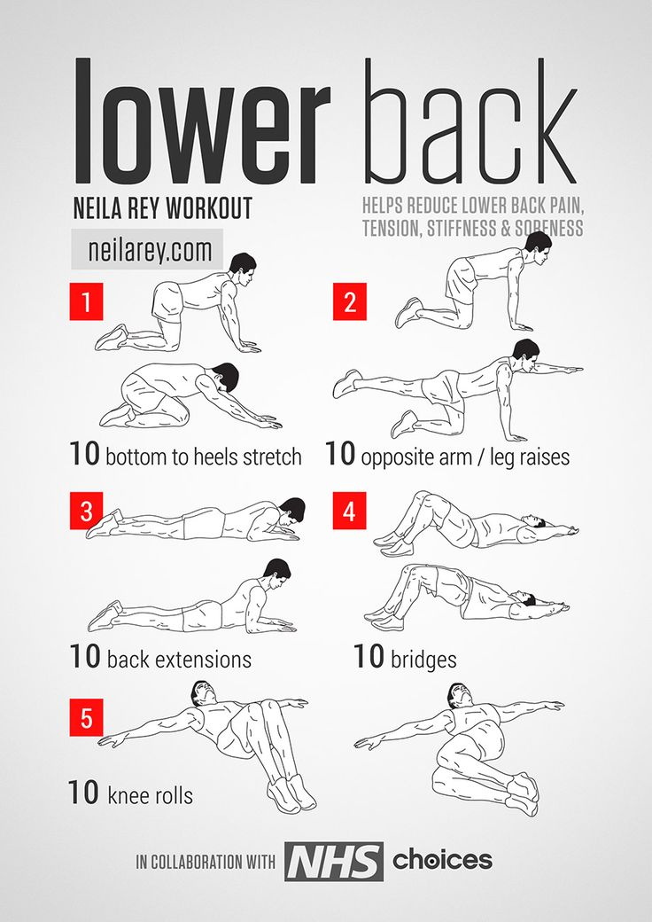 Lower Back Workout - Favorite Pins