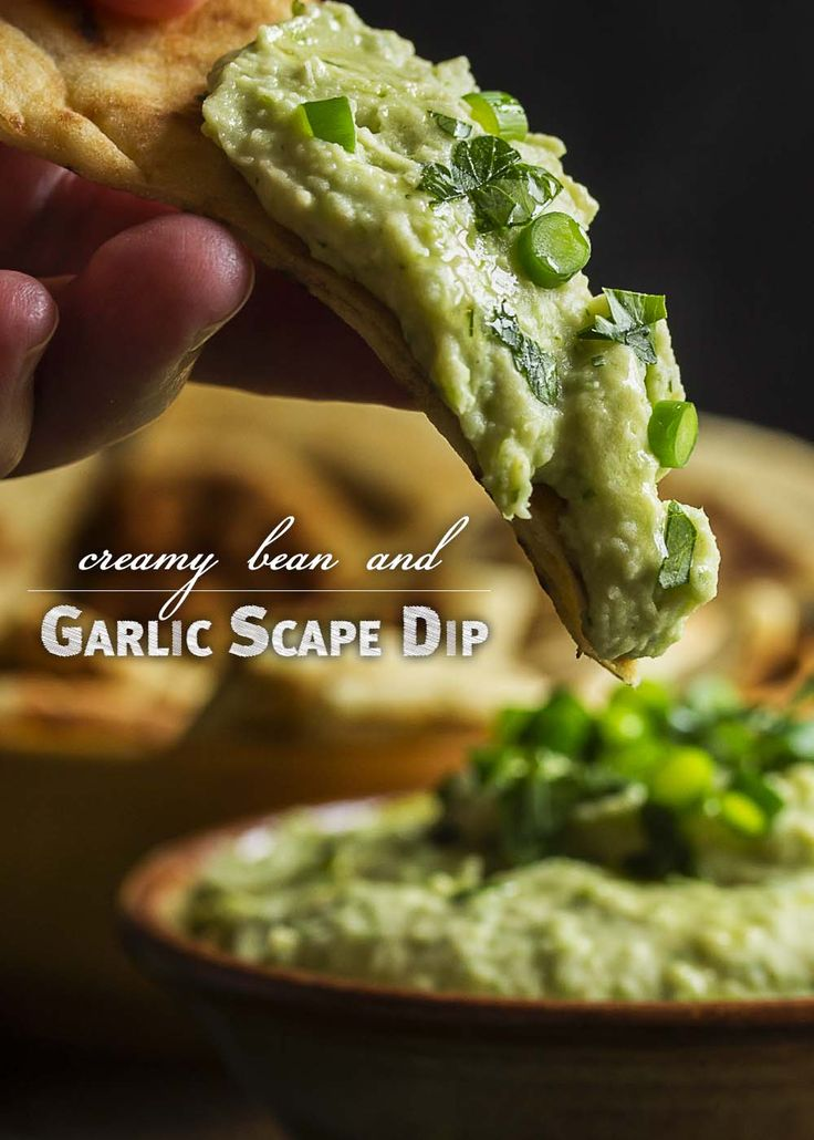 Wondering what to do with garlic scapes? Puree them into a quick and creamy, garlicky bean and garlic scape dip! Great as a healthy snack or for a party!   justalittlebitofbacon.com