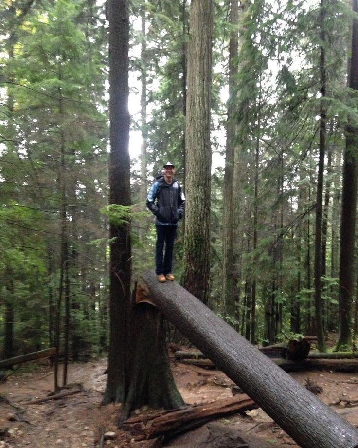 We found a wild backpacker at Deep Cove today! Rain doesnt stop the Samesun backpacker! #samesunvancouver #wildlife #canada #tree #nature #wanderlust #adventure #explore #hike #vancouver #wildbackpacker #backpacker