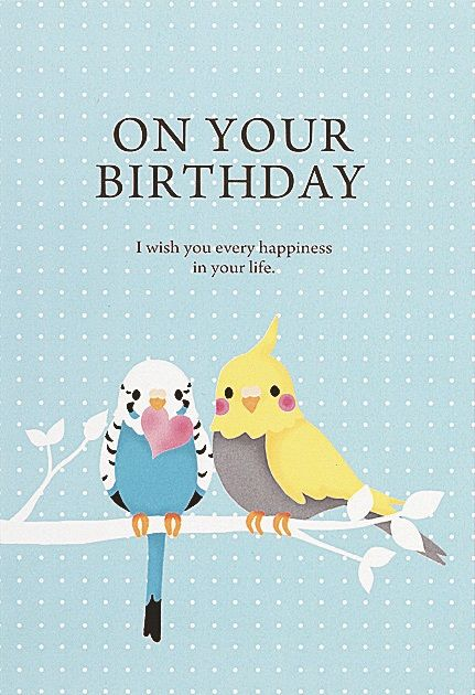 Pop-up Birthday Card / Parakeet / Birts, aves, felicidades, feliz cumpleaños
