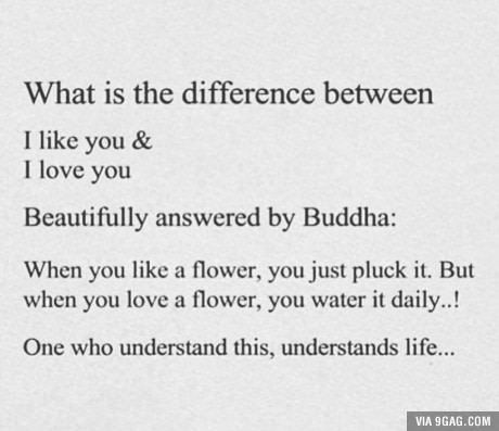 Buddha just forgot one thing what if the flower doesn't believe in water
