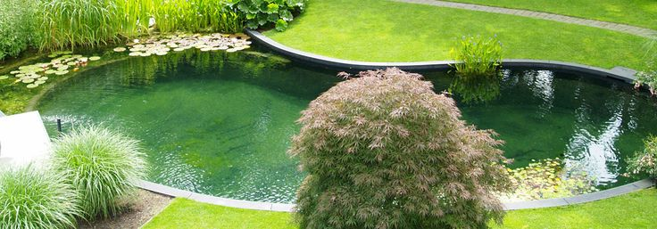 78 Best Ideas About Pond Heater On Pinterest Pond Ideas