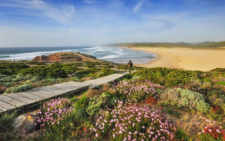 West Coast of #Portugal is one of the Best Places to go in Spring according to Rough Guides 08.04.2014 | This is a beautiful time of year for the Rota Vicentina, a network of walking trails on the west coast of Portugal's Alentejo region. There's an inland route – the Historical Way – but I'd plump for the sea-scraping Fishermen's Trail: the cliff-top paths afford stunning ocean views; the shrubs and flowers are aromatic beyond belief; and the native storks...