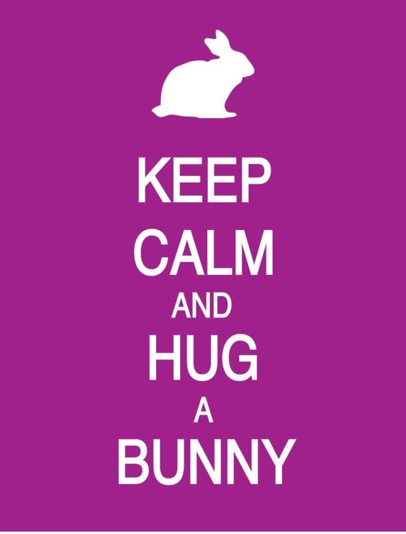 Keep Calm and Hug a Bunny Poster by PostersPersonalized on Etsy