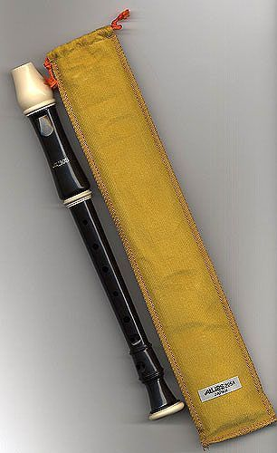 Recorder - I had this model but didn't get too far past 'London's Burning'...