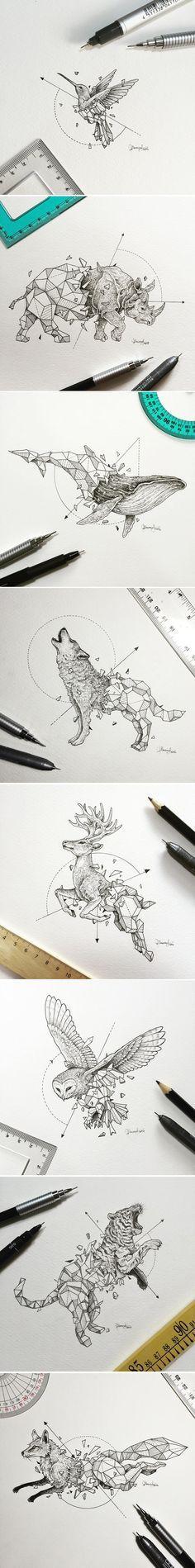 Origami: Tiere                                                       …