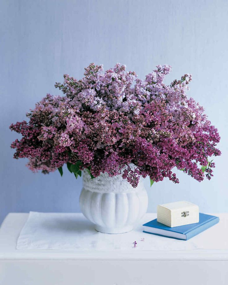 Lilac Arrangement | Martha Stewart Living - Lilac's subtle color variations are perfect for creating painterly, layered arrangements. Gather blooms in two or more hues, and group them by color gradation in a heavy vase.
