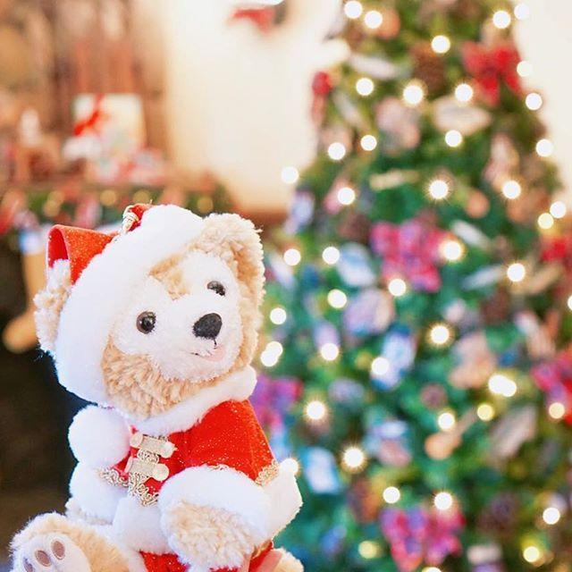 カンベアのクリスマスの飾りは可愛いから好きです🎄💕💕 . #東京ディズニーランド #TDL #ディズニー風景 #ディズニー写真部 #ダッフィー #disney #duffy #tokyodisneyland #disneygram #ディズニー好きな人と繋がりたい #ファインダー越しの私の世界 #ぬい撮り #カントリーベアシアター #クリスマスジャンボリー #クリスマスツリー #ディズニークリスマス #christmas #disneychristmas #サンタ #santaclaus